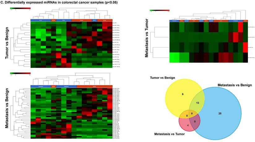 levels of mirnas mir 194 29b markers for colorectal cancer Background: studies have suggested that micrornas (mir) may be useful prognostic markers and are associated with aggressive clinicopathologic features in papillary thyroid cancer (ptc.